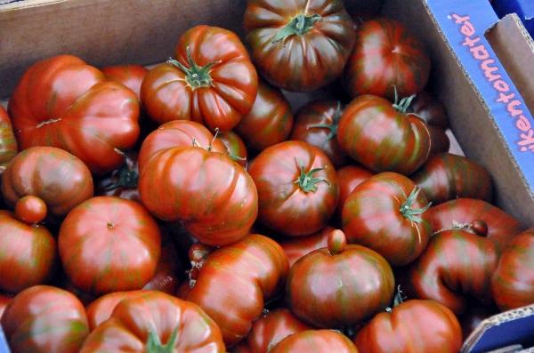 viken tomater 1 (600x397)