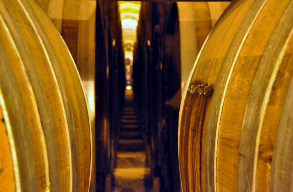 Florio Winery barrels (600x394)