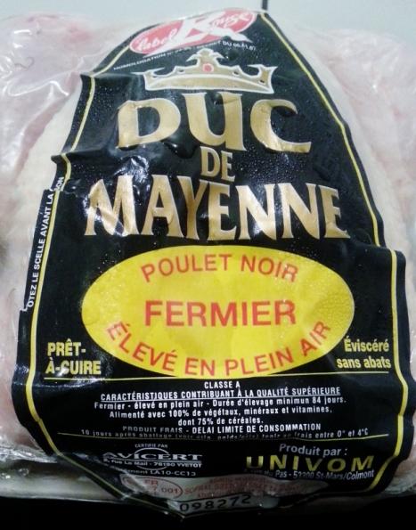 Duc de Mayenne (627x800)