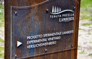 Tenuta Preella Lamberti (800x515)