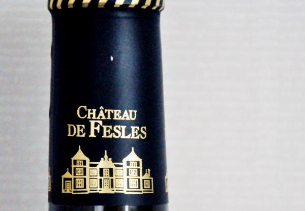 Chateau de Fesles (600x415)