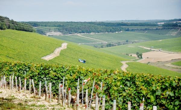 maskini-vingården-chablis-600x363