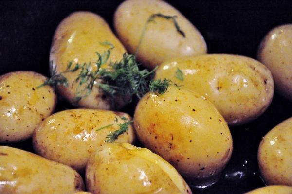 potatis (600x399)